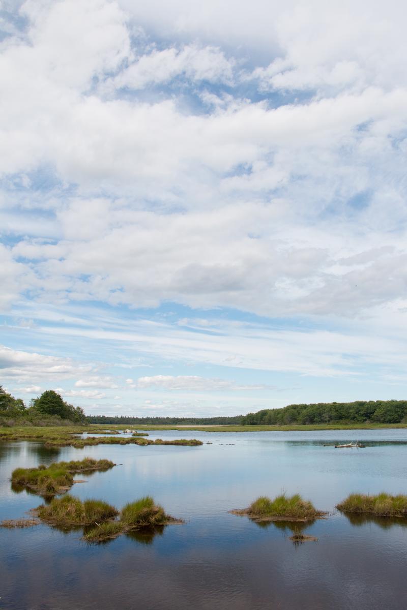 Wells Reserve, Maine