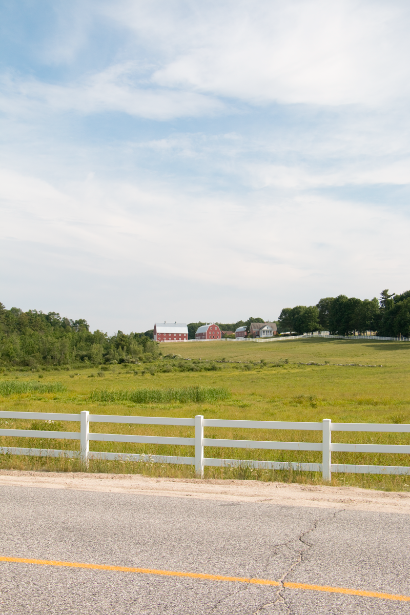 Pineland Farms, Maine