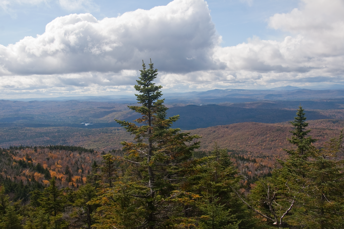 Mt. Cardigan, New Hampshire